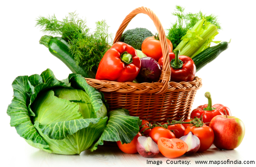 Start an Online Organic Food chain today